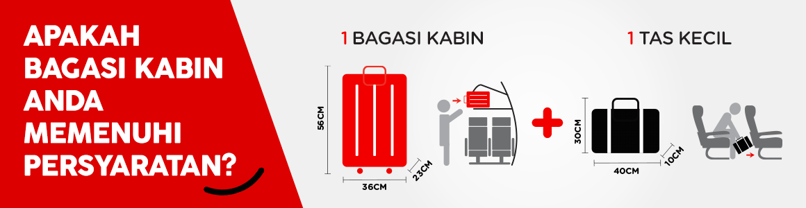 baggage-lp-idid